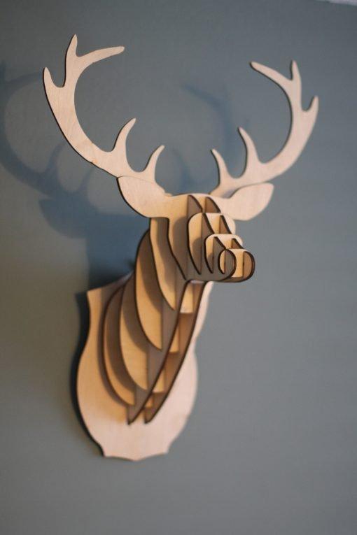 Deer M Berken