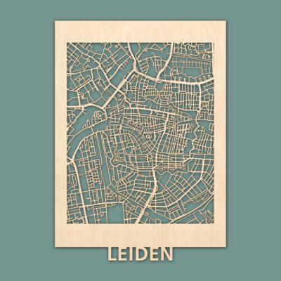 Citymap Leiden Berken (50x70) RENDER