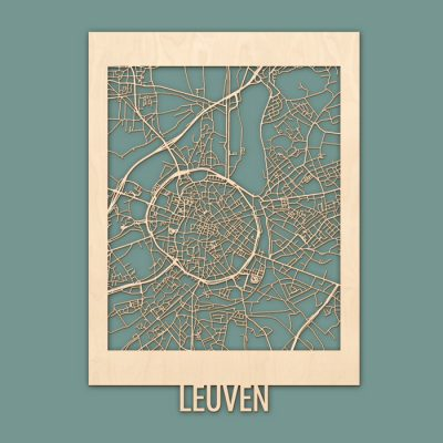 Citymap Leuven 50x70 Berken Render