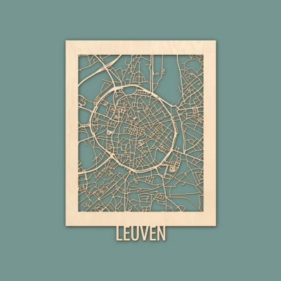 Citymap Leuven 30x40 Berken Render