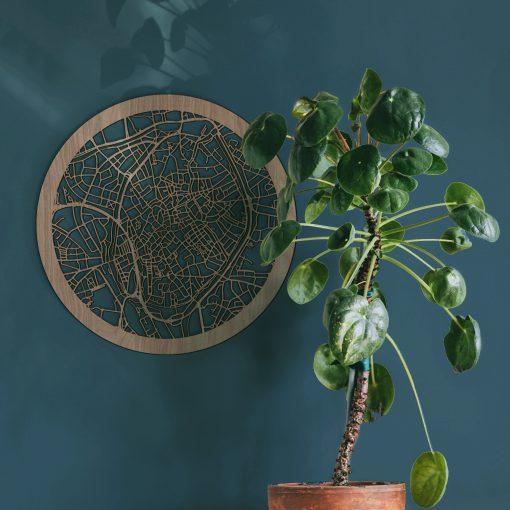Plant met kleur achtergrond Brugge Rond Notenhout